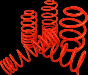 Merwede ültető rugó  |  E-CLASS CABRIO E220CDi/E250CDi/E300/E350/E350CGi/E400 |  25MM